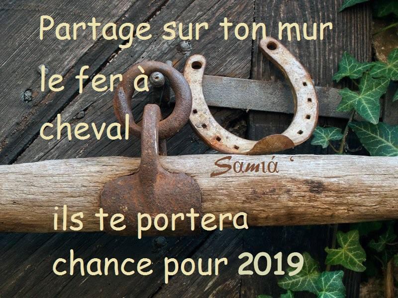Partage sur ton mur le fer à cheval ils te portera chance pour 2019