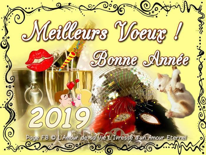 Meilleurs Voeux ! Bonne Année 2019