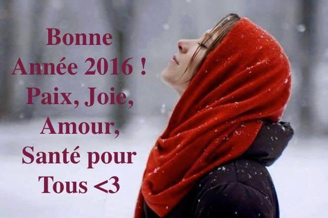 Bonne Année 2016 ! Paix, Joie, Amour, Santé pour Tous