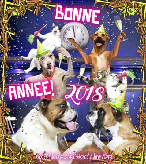 Bonne année 2018 image 3