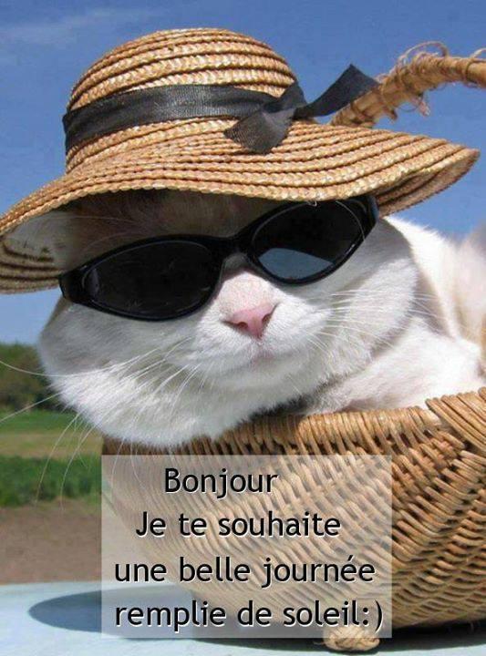 Bonjour, Je te souhaite une belle journée remplie de soleil <img src=