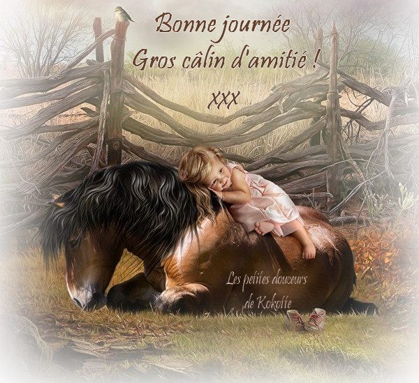 Bonne journée, gros câlin d'amitié ! xxx