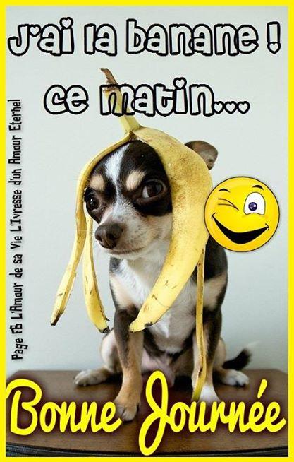 J'ai la banane ce matin... Bonne...