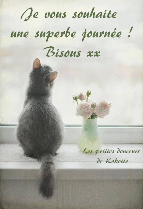 Je vous souhaite une superbe journée !...