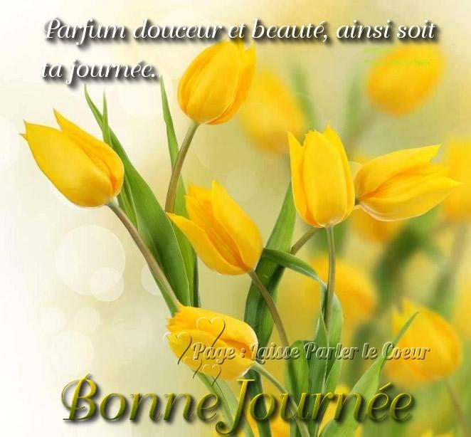 Parfum douceur et beauté, ainsi soit ta journée