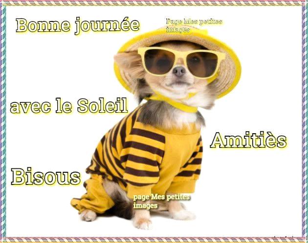9 Images Et Photos Avec Tag Bonne Journée Humour Bonnesimages