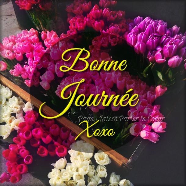Bonne Journée Xoxo