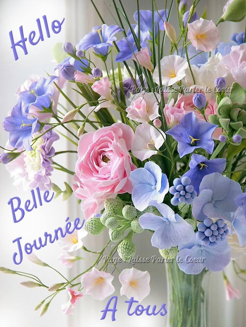 Hello, Belle Journée à tous