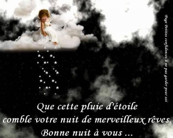 Que cette pluie d'étoile comble votre nuit de merveilleux rêves. Bonne nuit à vous...