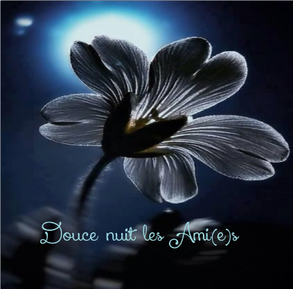 Douce nuit les Ami(e)s