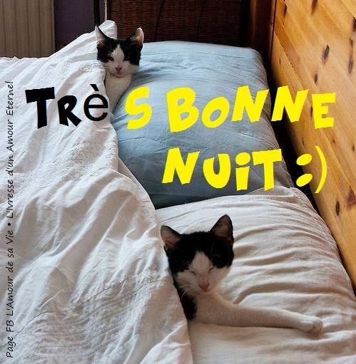Très Bonne Nuit :)