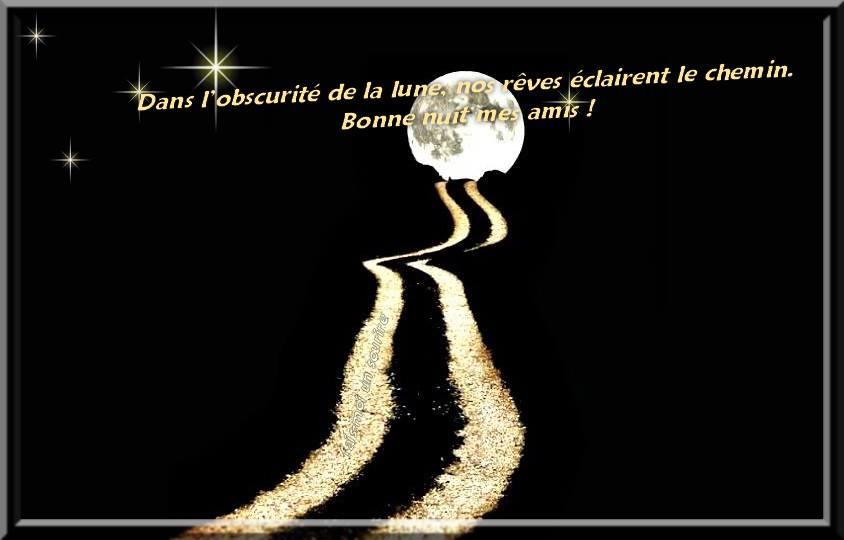 Dans l'obscurite de la lune, nos rêves éclairent le chemin. Bonne nuit mes amis!
