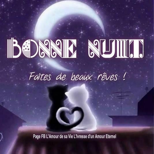 bonne-nuit_079