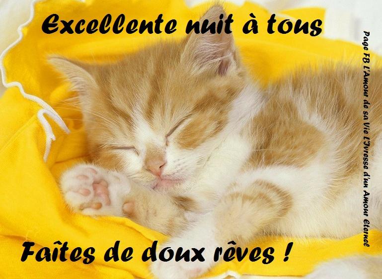Excellente nuit à tous. Faites de doux rêves !