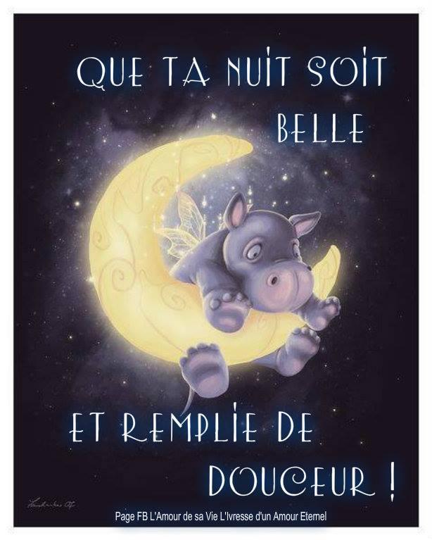 Bonne nuit image 4