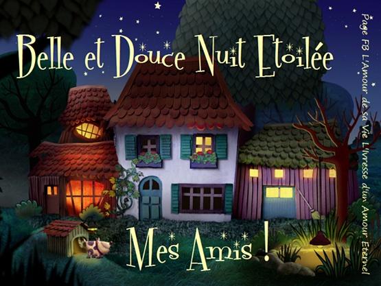 Belle et douce nuit étoilée mes amis !