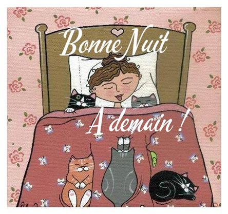Bonne nuit, à demain !