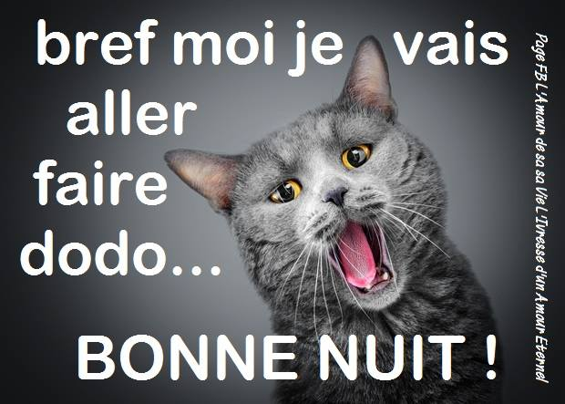 je vais essayer de dormir Je vais translation english, french - english dictionary, meaning, see also 'vas',visa',vis',valise', example of use, definition, conjugation, reverso dictionary.