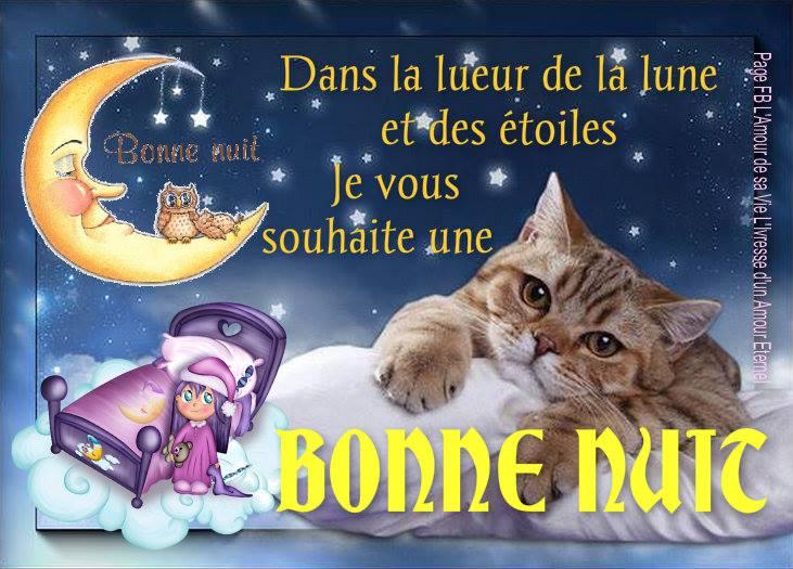 Dans la lueur de la lune et des étoiles, Je vous souhaite une bonne nuit