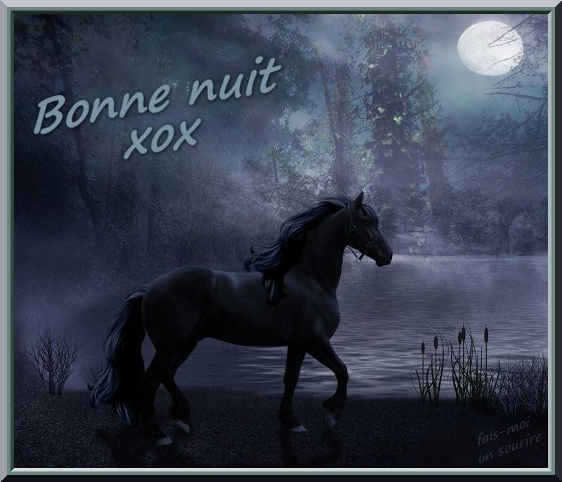 Bonne nuit xox