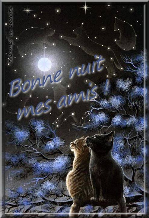 bonne-nuit_136