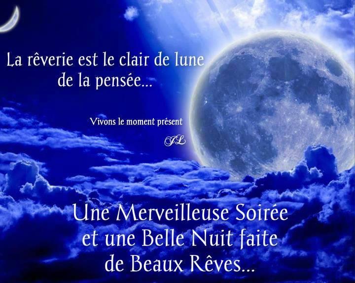 La rêverie est le clair de lune de la pensée...
