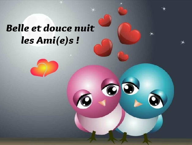 Belle et douce nuit les Ami(e)s !