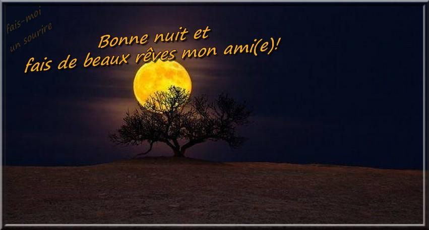 Bonne nuit et fais de beaux rêves mon ami(e)!