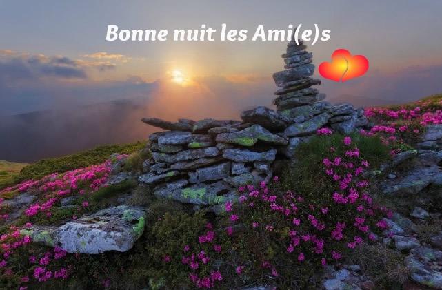 Bonne nuit les Ami(e)s