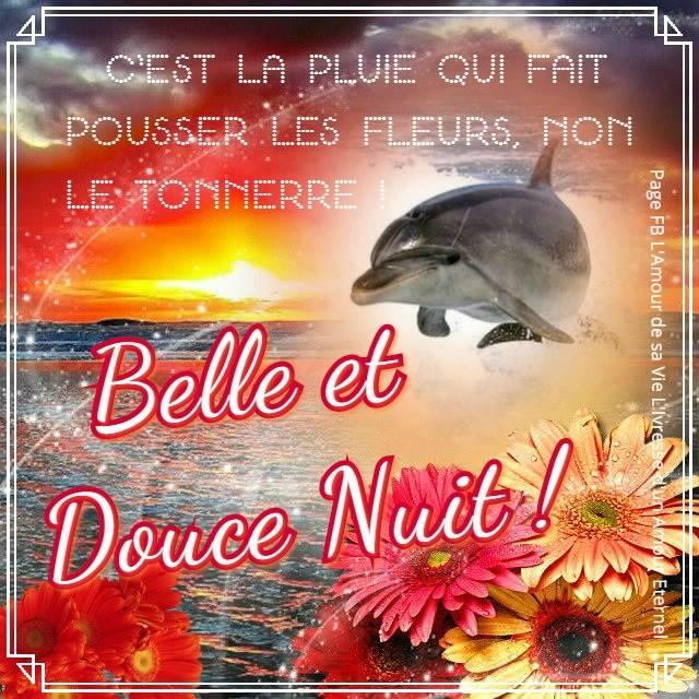 Belle et Douce Nuit !