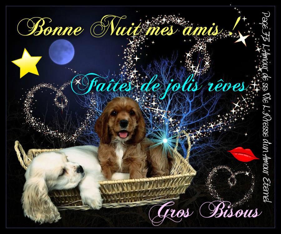Bonne Nuit mes amis ! Faites de jolis rêves