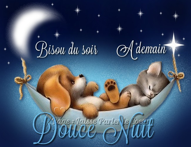 Bonne nuit images, photos et illustrations pour facebook