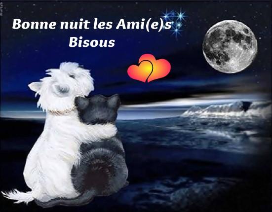 Bonne nuit les Ami(e)s, Bisous