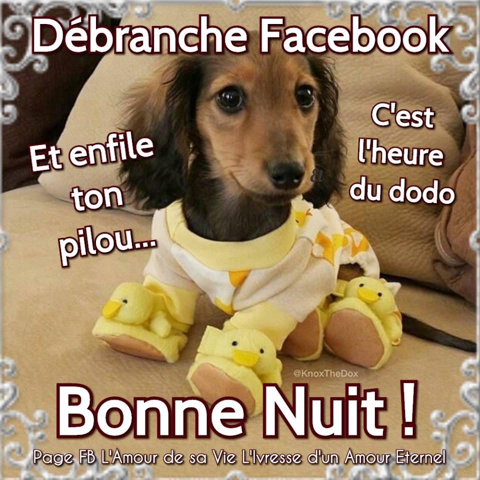 Débranche Facebook... Bonne Nuit !