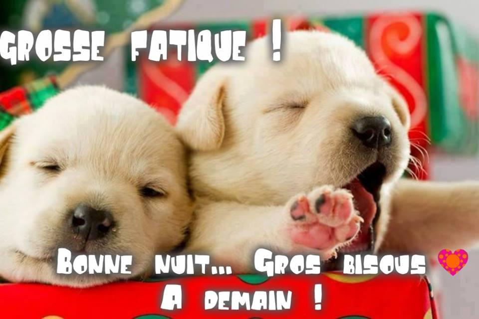 Grosse fatigue ! Bonne nuit... Gros bisous, à demain !