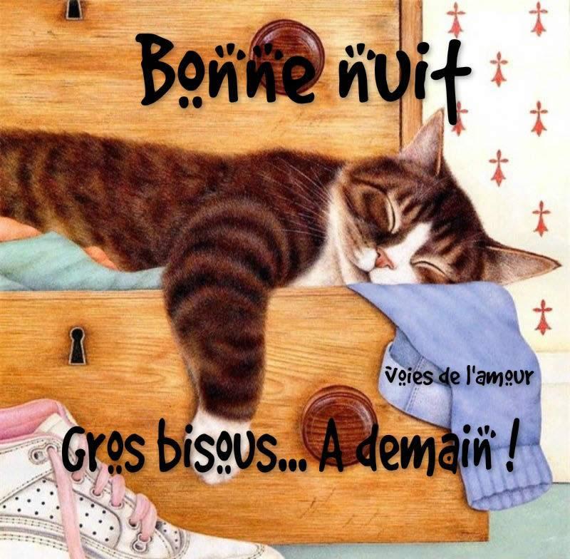 bonne-nuit_239