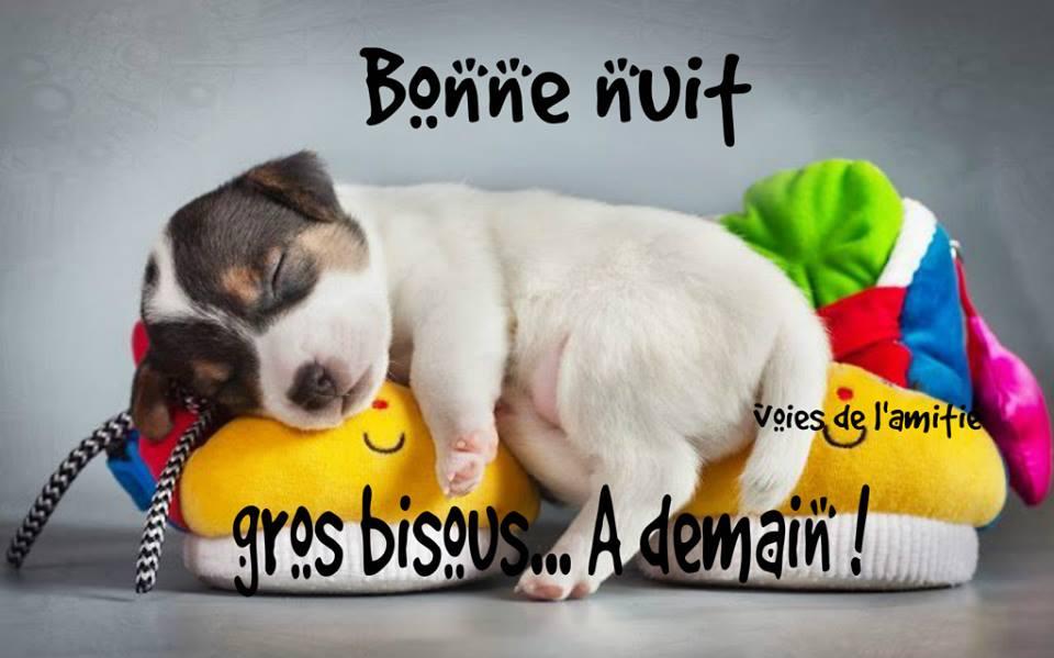 Bonne nuit, gros bisous... À demain!