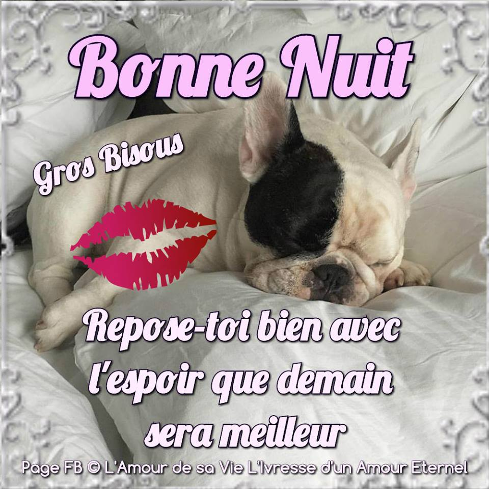 Bonne nuit image 1