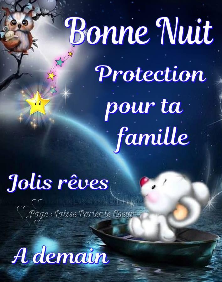 Bonne Nuit. Protection pour ta famille...
