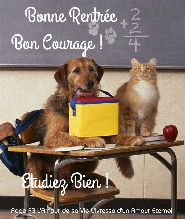 Bonne rentrée, Bon courage ! Étudiez bien !