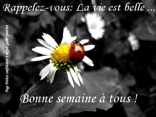 Rappelez-vous: La vie est belle... Bonne...