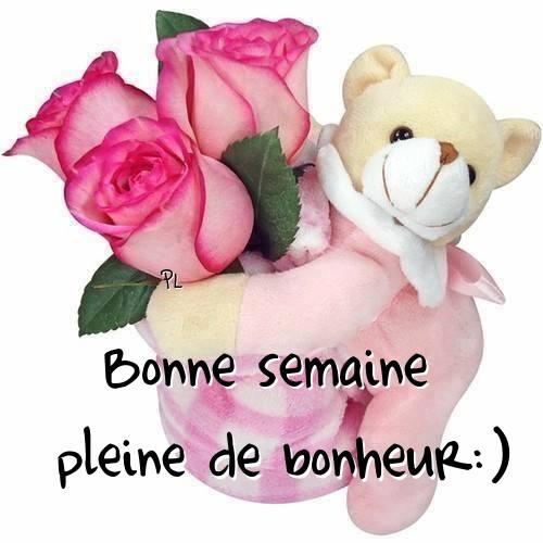 Bonne semaine pleine de bonheur :)