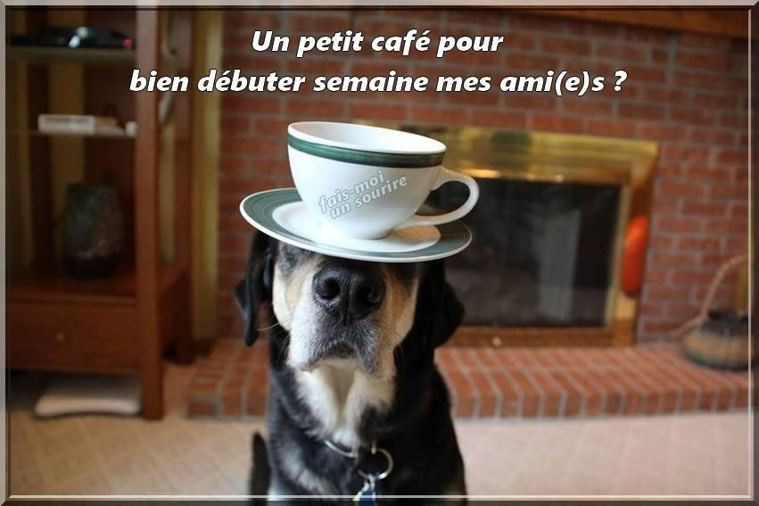 Un petit café pour bien débuter semaine mes ami(e)s ?