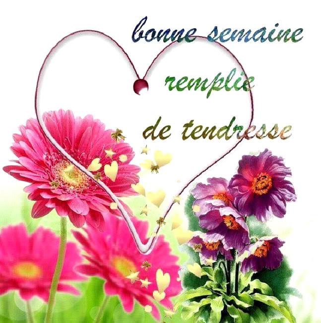 http://img1.bonnesimages.com/bi/bonne-semaine/bonne-semaine_068.jpg