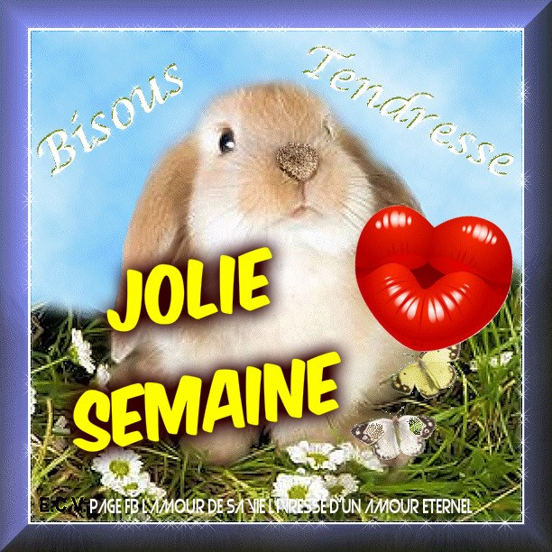 Jolie Semaine, Bisous, Tendresse