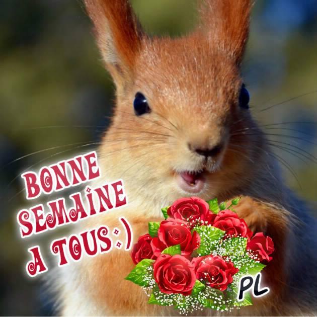 Bonne Semaine a tous :)