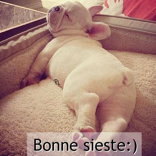 Bonne sieste :)