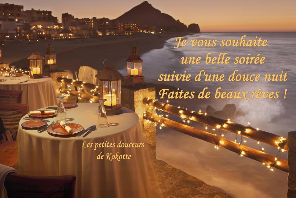 Je vous souhaite une belle soirée, suivie d'une douce nuit faites de beaux rêves!