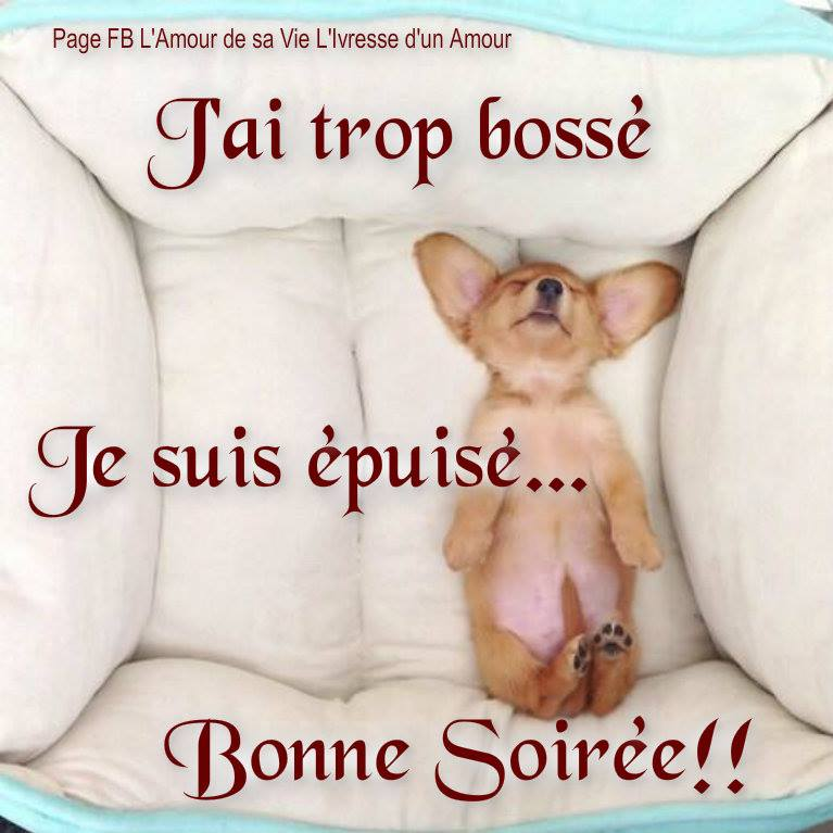 Janvier... - Page 15 Bonne-soiree_043