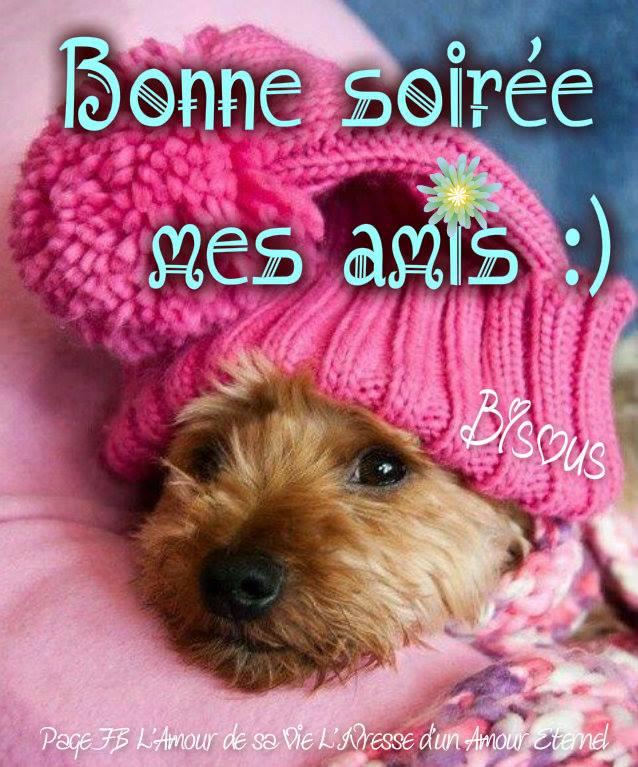 Bonne soirée mes amis :)